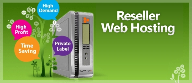 What is Reseller Hosting ? does it helps to cut down Web Hosting cost?